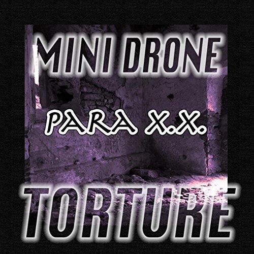 Mini Drone: Torture