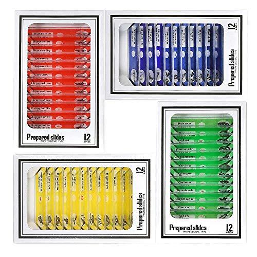 Vetrini Preparati per Microscopio per Bambini, Bysameyee Plastica 48 pezzi Animali Insetti Piante Fiori Campioni Campioni per Studenti Istruzione per l'infanzia Biologia Programmi scientifici